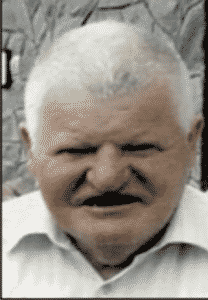 Mirko Botić